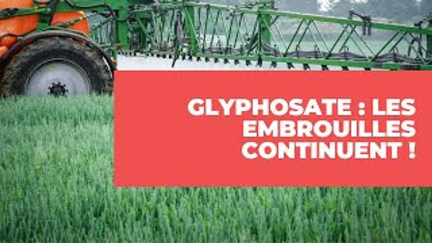Photo de l'article Glyphosate : Les embrouilles continuent !